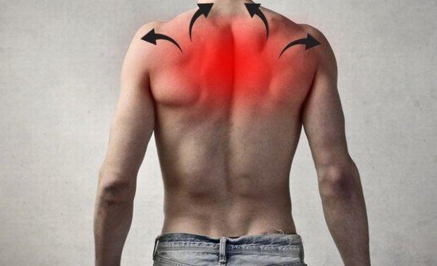 Болят плечи и спина между лопатками