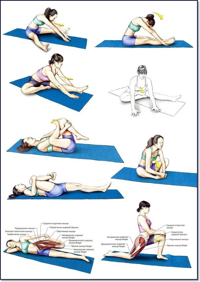 Упражнения для растяжка для начинающих в домашних условиях