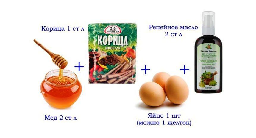 Маска для роста волос яйцо мед репейное масло