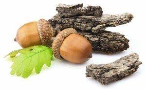 Застосування кори дуба при лікуванні діареї
